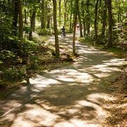 Nature Usdan Summer Camp