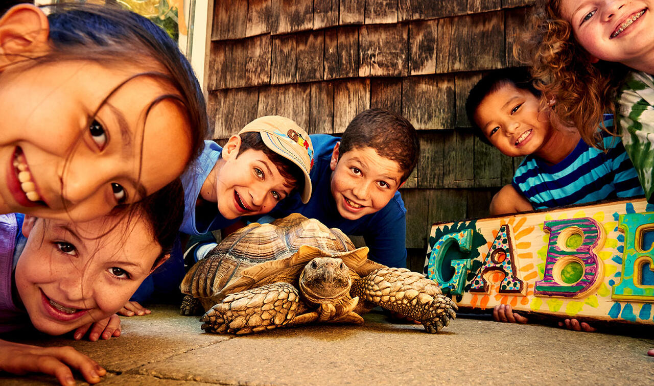 Smiling nature students surrounded by a tortoise
